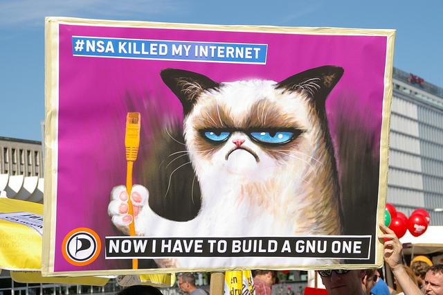 Grumpy Cat builds a GNU Internet by Frerk Meyer CC BY SA